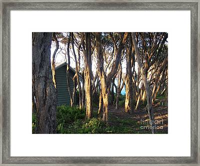 A Glimpse Of Paradise Framed Print by Therese Alcorn