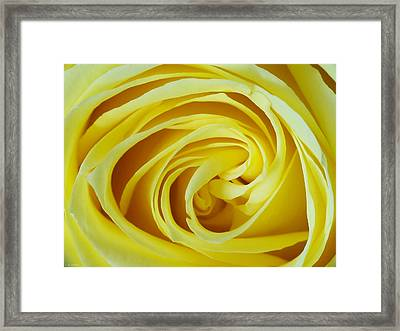 A Grandmother's Love Framed Print