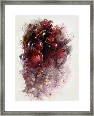 A Grape Mystery Framed Print by Rachel Christine Nowicki