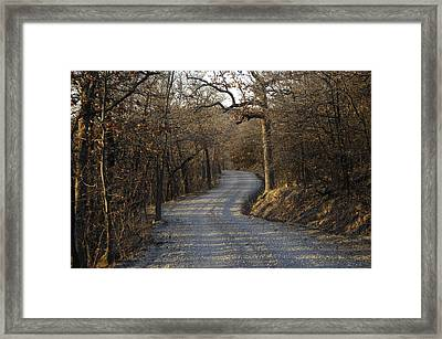 A Gravel Road Cuts Through A Wooded Framed Print