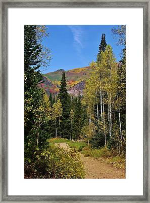A Hike Through The Mountains Framed Print by Bruce Bley