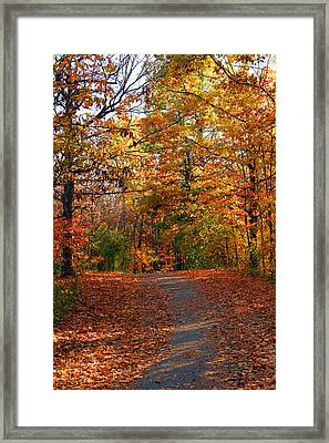 A Hikers Dream Framed Print by James Hammen
