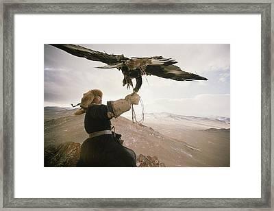 A Kazakh Hunter Strains To Support Framed Print by David Edwards