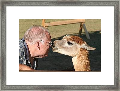 Framed Print featuring the photograph A Kiss On The Nose by Paula Tohline Calhoun