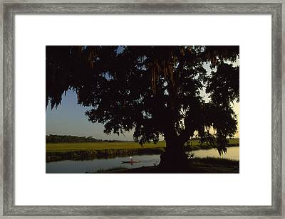 A Late Afternoon Kayaker In The Marshes Framed Print