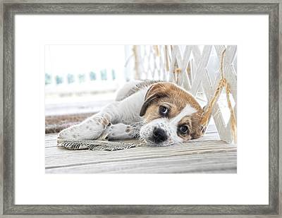 A Little Rest Framed Print by Tilly Williams