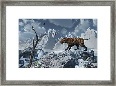 A Lone Sabre-toothed Tiger In A Cold Framed Print by Mark Stevenson