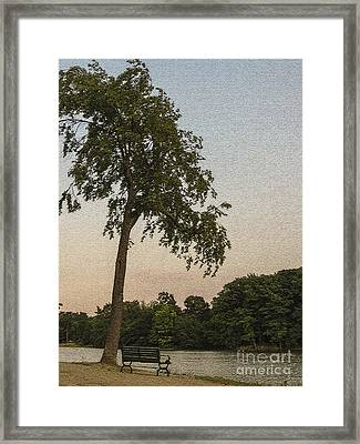 A Lonely Park Bench Framed Print