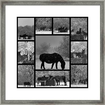 A Long Winter Framed Print by Christy Leigh