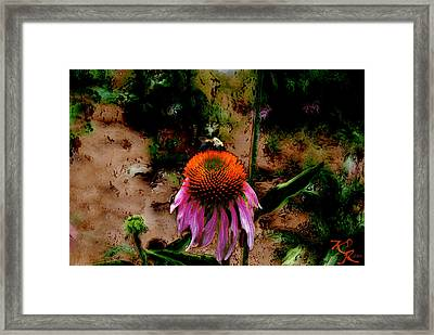 A Lot To Do Today Framed Print by Kelly Rader