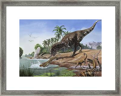 A Majungasaurus Grabs The Tail Framed Print by Sergey Krasovskiy