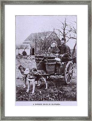 A Market Team In Flanders. Two Dogs Framed Print by Everett