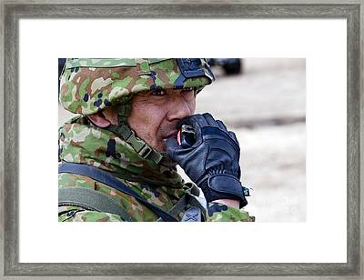 A Member Of The Japan Ground Framed Print by Stocktrek Images