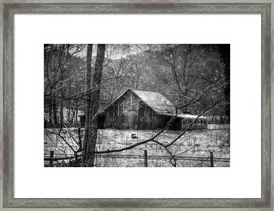A Memory In Black And White Framed Print