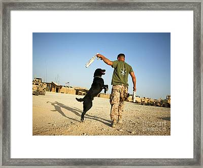 A Military Working Dog Handler Conducts Framed Print by Stocktrek Images