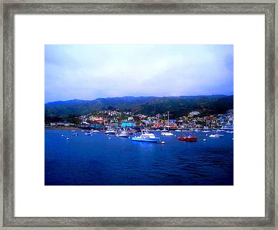 A Misty Morning In Avalon Harbor Framed Print by Catherine Natalia  Roche