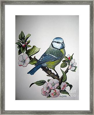 A Moment In Spring Framed Print