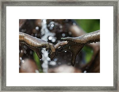 A Moment In Time 2 Framed Print by Robert Ullmann