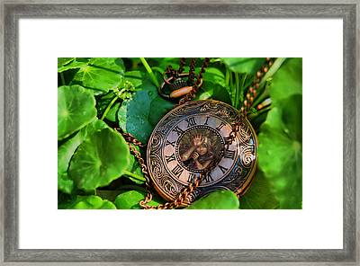 A Moment In Time Framed Print by Alex Hardie