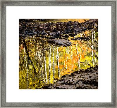 A Moment Of Reflection Framed Print by Mary Amerman