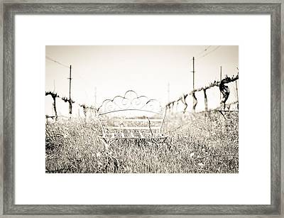A Moment To Ponder Framed Print by Aileen Savage