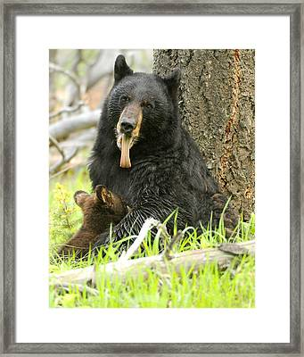 A Mother's Work Framed Print by Amy Gerber