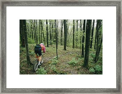 A Mountain Biker Heads Down A Wooded Framed Print by Skip Brown