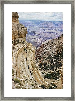 A Muleback Party Comes Framed Print by Justin Locke
