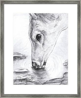 A Needed Drink Framed Print by Renee Catherine Wittmann