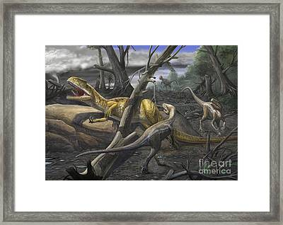 A Neovenator Salerii Is Approached Framed Print by Sergey Krasovskiy