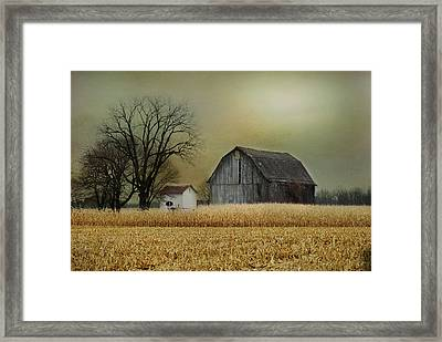 Framed Print featuring the photograph A New Dawn by Mary Timman