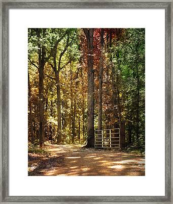 A New Season Framed Print by Jai Johnson