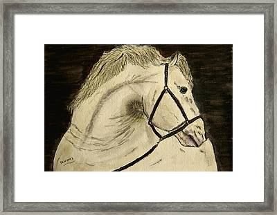 A Noble Horse. Framed Print