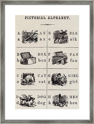 A Page From The Pictorial Alphabet Framed Print by Photo Researchers