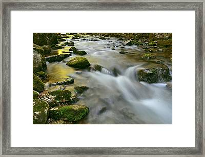 A Painted Stream Framed Print by Jeff Rose
