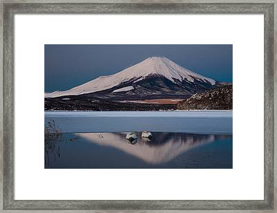 A Pair Of Mute Swans In Lake Kawaguchi In The Reflection Of Mt Fuji, Japan Framed Print by Mint Images/ Art Wolfe