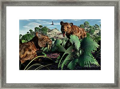 A Pair Of Sabre-toothed Tigers Framed Print by Mark Stevenson