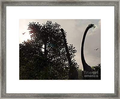 A Pair Of Sauroposeidon Feed Framed Print by Walter Myers