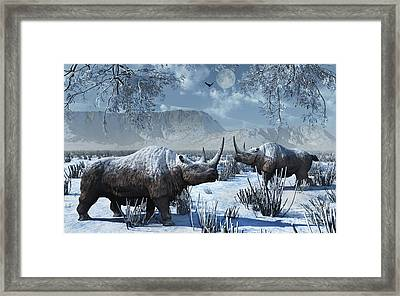 A Pair Of Woolly Rhinoceros In A Severe Framed Print