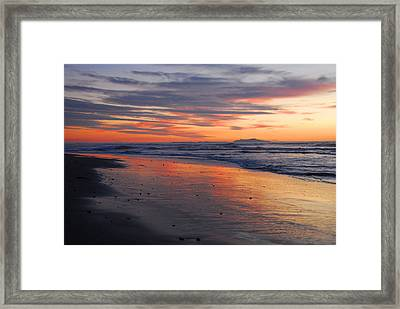 Framed Print featuring the photograph A Passion For Purple by Lynn Bauer