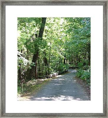 Framed Print featuring the photograph A Path To Somewhere... by Tanya Tanski