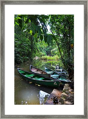 A Peaceful Place Framed Print by Li Newton