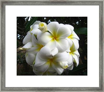 A Perfect Bouquet  Framed Print by Kerri Ligatich