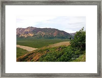 Framed Print featuring the photograph A Photographer's Dream by Kathy  White