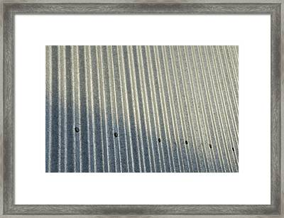 A Piece Of Metal Sheeting At A Sawmill Framed Print by Joel Sartore
