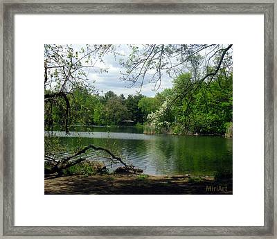A Place To Meditate Framed Print by Miriam Shaw