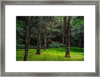 A Place To Unwind Framed Print by Scott Hervieux