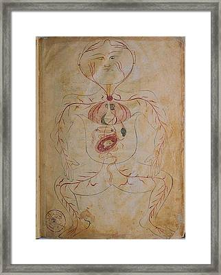 A Pregnant Woman, From Mansurs Anatomy Framed Print by Everett