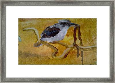 A Quick Snack Framed Print by Paul Morgan