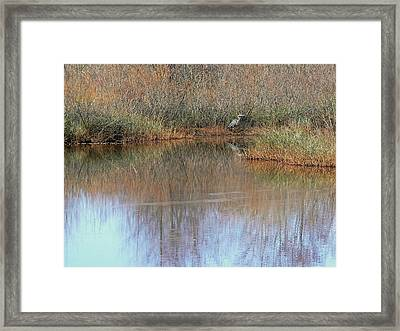 A Quiet Place  Framed Print by Pamela Patch